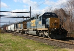 CSX 8081 on Q300